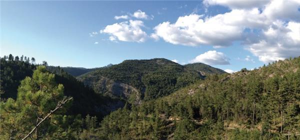 Fond Panoramique De Decor Montagne 50 Cm Lr Presse