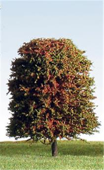 4 arbres feuillus