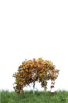 Pommier avec fruits en automne