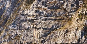 Feuille de décor roche Lucerna
