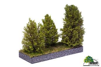 Grand buisson vert clair 10-12 cm