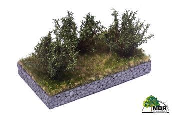 Petit buisson vert foncé 4-6 cm