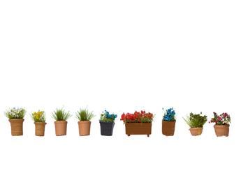 Jardinières et grands pots de fleurs