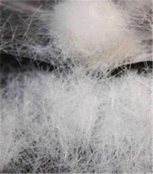 Filaments de végétaux blancs (6mm)