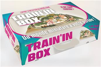 TRAIN IN BOX